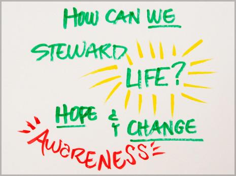 Steward-life